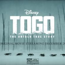 Michael McElhatton is in Disney's thrilling adventure movie 'Togo'